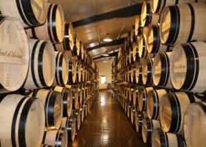 The barrels in the cellar at Château de Pressac in Bordeaux