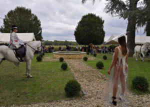Horse representation at Château de Jouvente