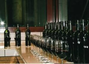 Wine Tasting at Chateau Bellevue de Tayac