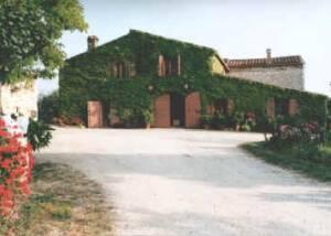 Estates of Azienda Agricola Casale