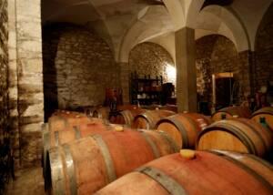 Wine Barrels at Tenuta Montiani