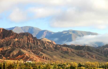 Salta wine region