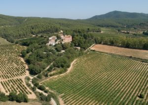 The view on the vineyard of Casa Ravella