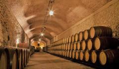 wooden barrels full of wine at Aruspide winery cellar in Spain