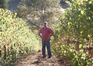optima winemaker standing between two rows of vine in united states