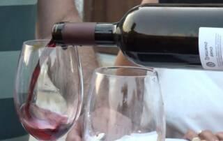 Wine Tasting at Vinarija Trisic