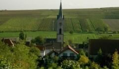Area of Weingut Jens Christmann