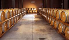 Viticoltori Associati di Vinchio Vaglio Serra winery cellar full of barrels