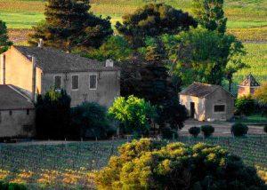 Ollieux Romanis - winery