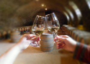 Château de Pierreclos - wine tasting in the cellar