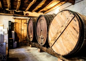Italian winery cellar of Stramaret with old barrels inside