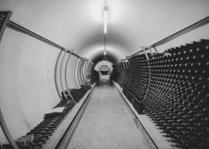 Extensive wine cellar in the estate of Cantina Giuseppe Sedilesu.