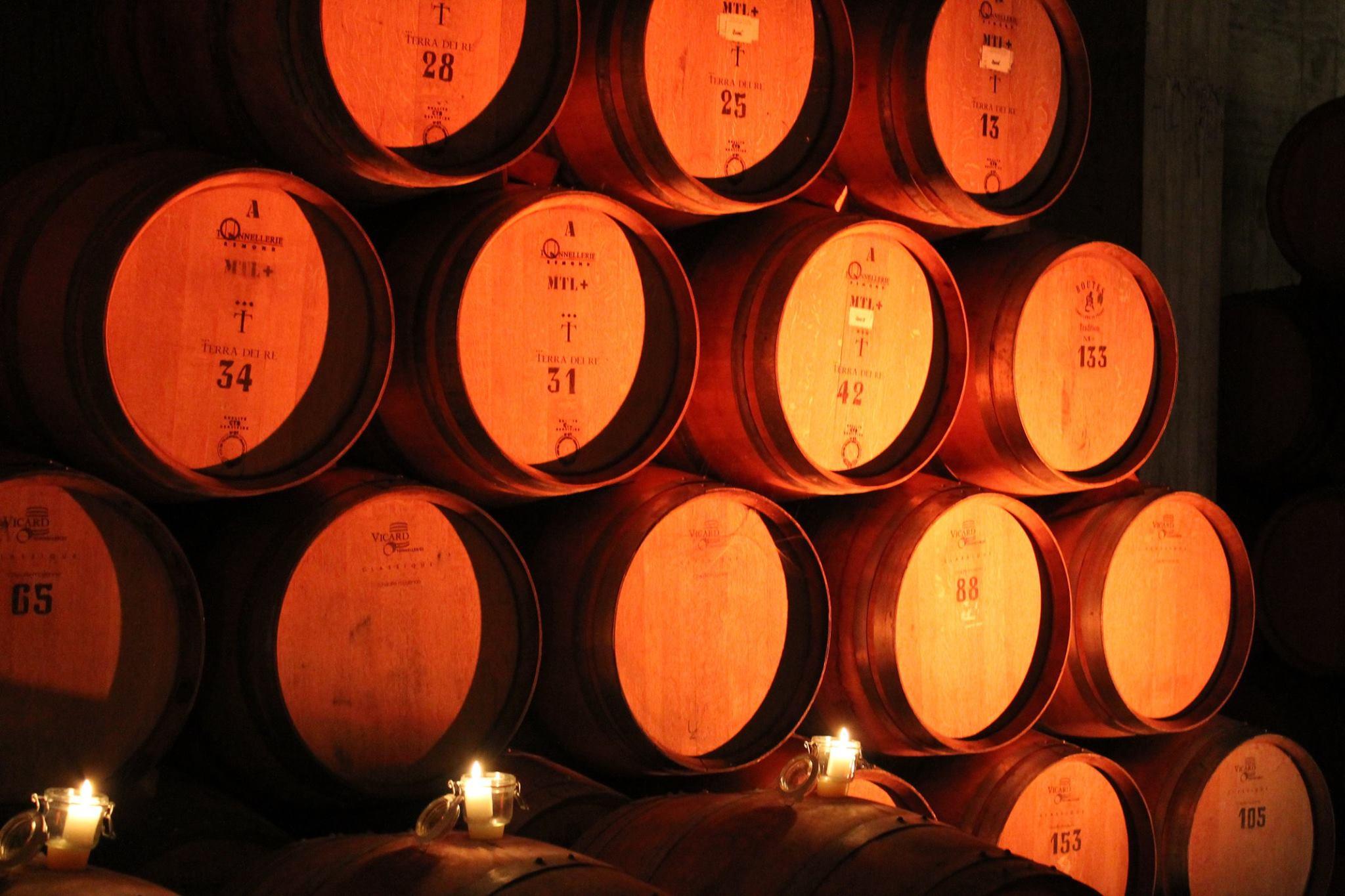 Terra Dei Re winery cellar full of barrels with wine