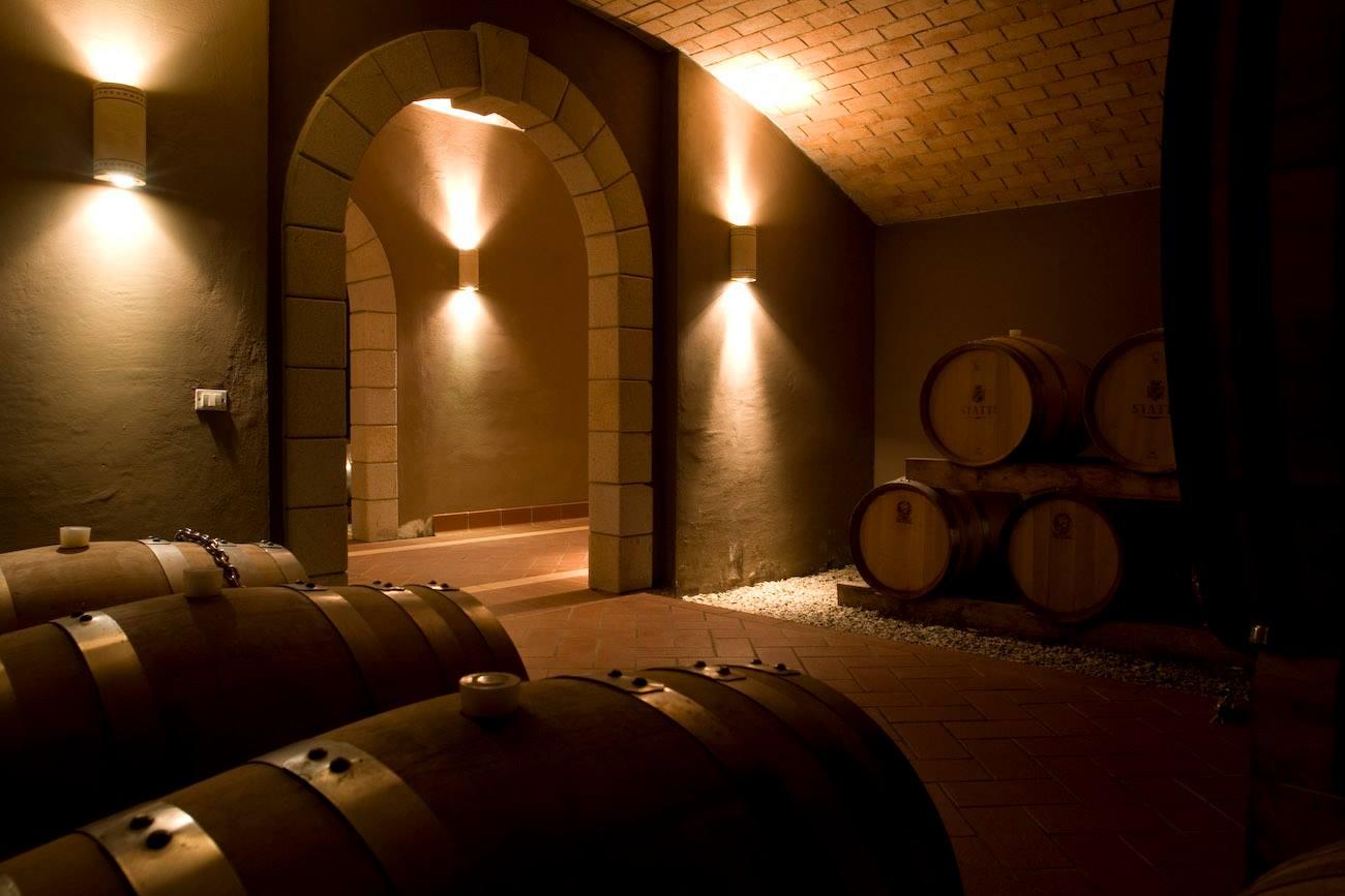 Statti winery cellar full of wooden barrels in Italy