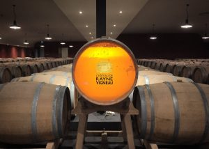 The barrels in the cellar et Château de Rayne Vigneau