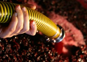 A winemaker uses a hose during wine production in the striking Perazzeta winery.