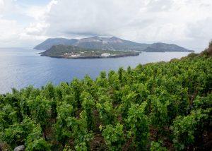 Tenuta Di Castellaro island view in Italy