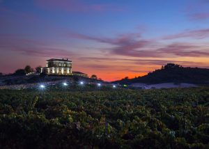 view of vineyard at Tenute Lombardo winery building located in Italy