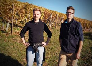 The work in the vineyard at Wunsch & Mann