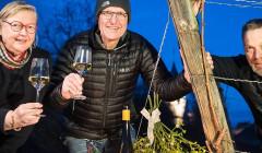 Vins Becker - wine tasting in the evening