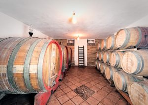 Tenuta Garetto winery cellar with big barrels inside in Italy