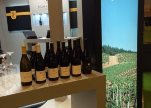 Bodegas Estefania - wine presentation