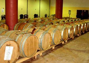 Wooden barrels in the modern wine cellar of winery Cantina Giuseppe Sedilesu.
