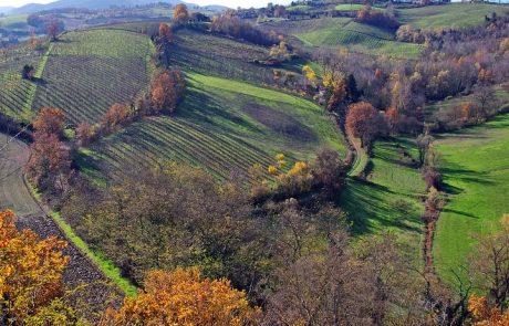 Emilia – Romagna wine region
