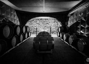 Black and white photo of the wine cellar of the Villanoviana winery.