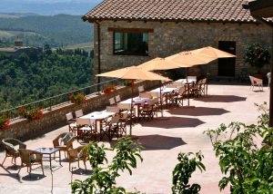 place at Tenuta Vitalonga where you can enjoy view and taste wines