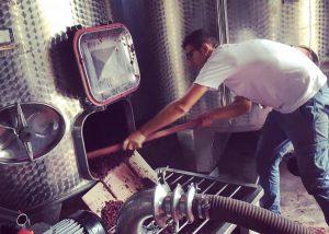 Tenuta La Favola winery worker checks wine tank in Italy