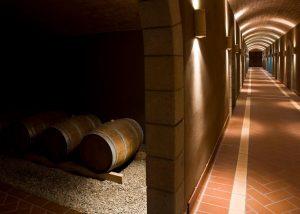 italian wooden barrels full of wine in Statti winery located in Italy