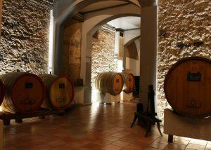 Peri Bignono winery cellar full of old wooden barrels in Italy