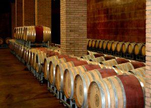 winery cellar at Tenuta Vitalonga full of barrels located in Italy