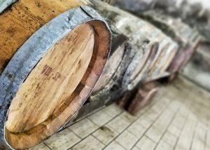 Antique wooden barrels for wine in the cellar of La Ciarliana.