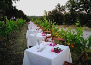 wine tasting in garmony with nature at Tenuta Vitalonga vineyard located in Italy