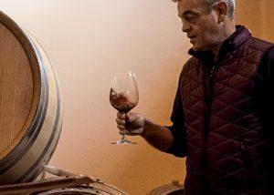 eraldo viberti winemaker tasting great red wine inside wine cellar