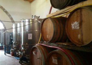 Tenuta La Favola winery tanks and barrels in Italy