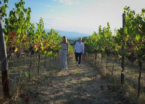 Torre Zambra vineyard where three people walking around