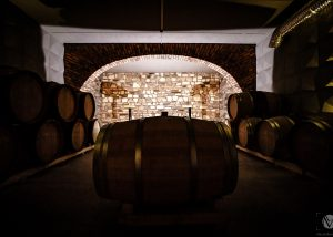 Illuminated modern wine cellar with wooden barrels in Villanoviana.