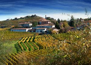 Azienda Agricola Cascina Pian D'or_winery
