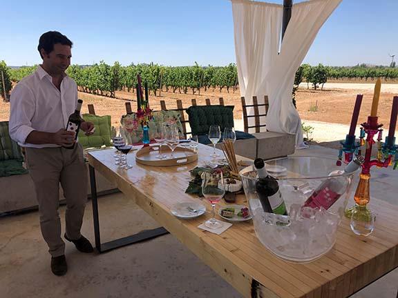 A wine tasting at the Bodega y Viñedos Martín Berdugo