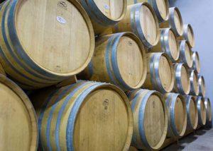 Bodegas y Viñedos Gancedo_barrels_Yes