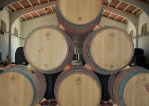 Bodega Cerro San Cristobal - barrels