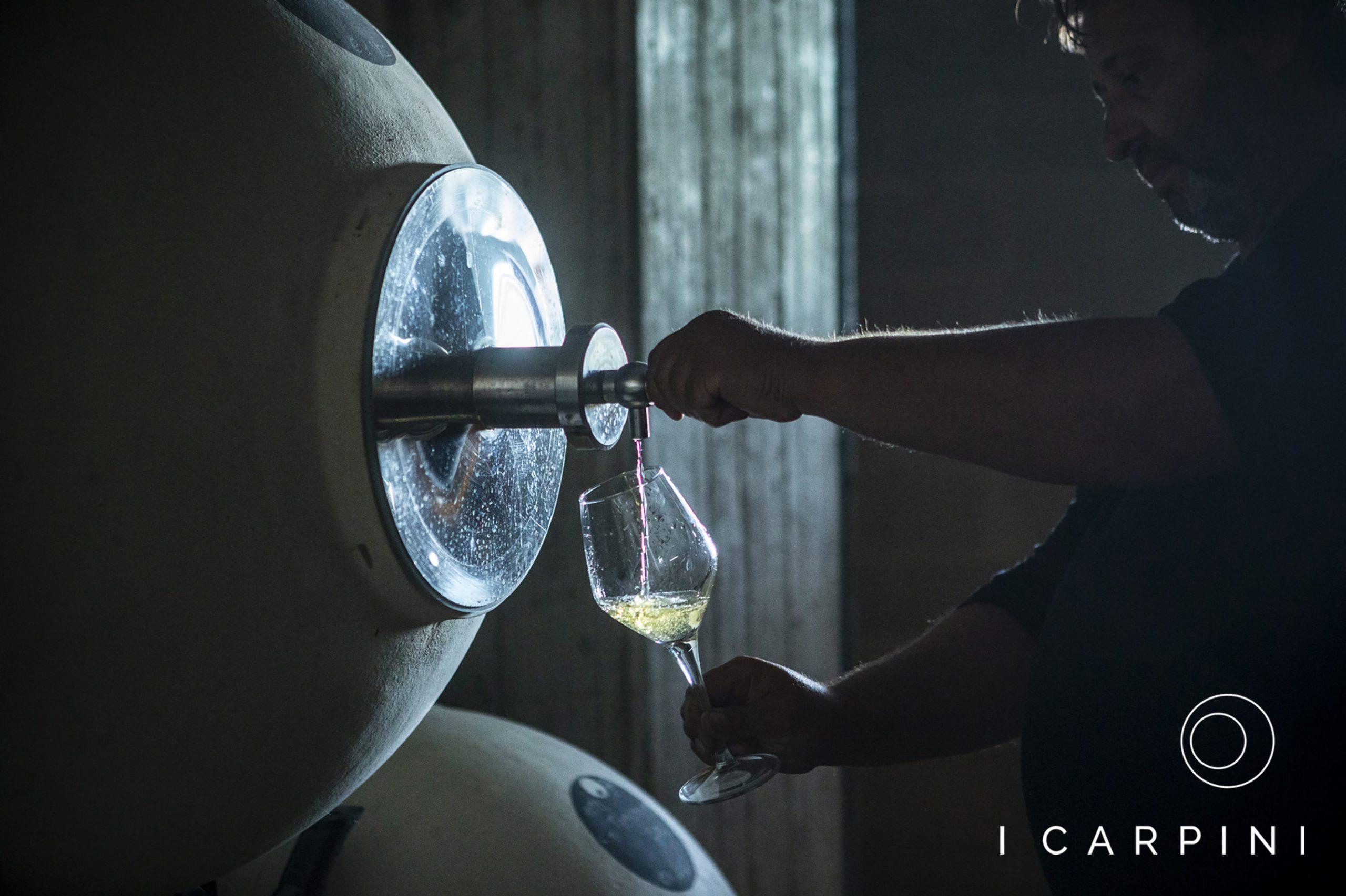 Cascina I Carpini_white wine tasting