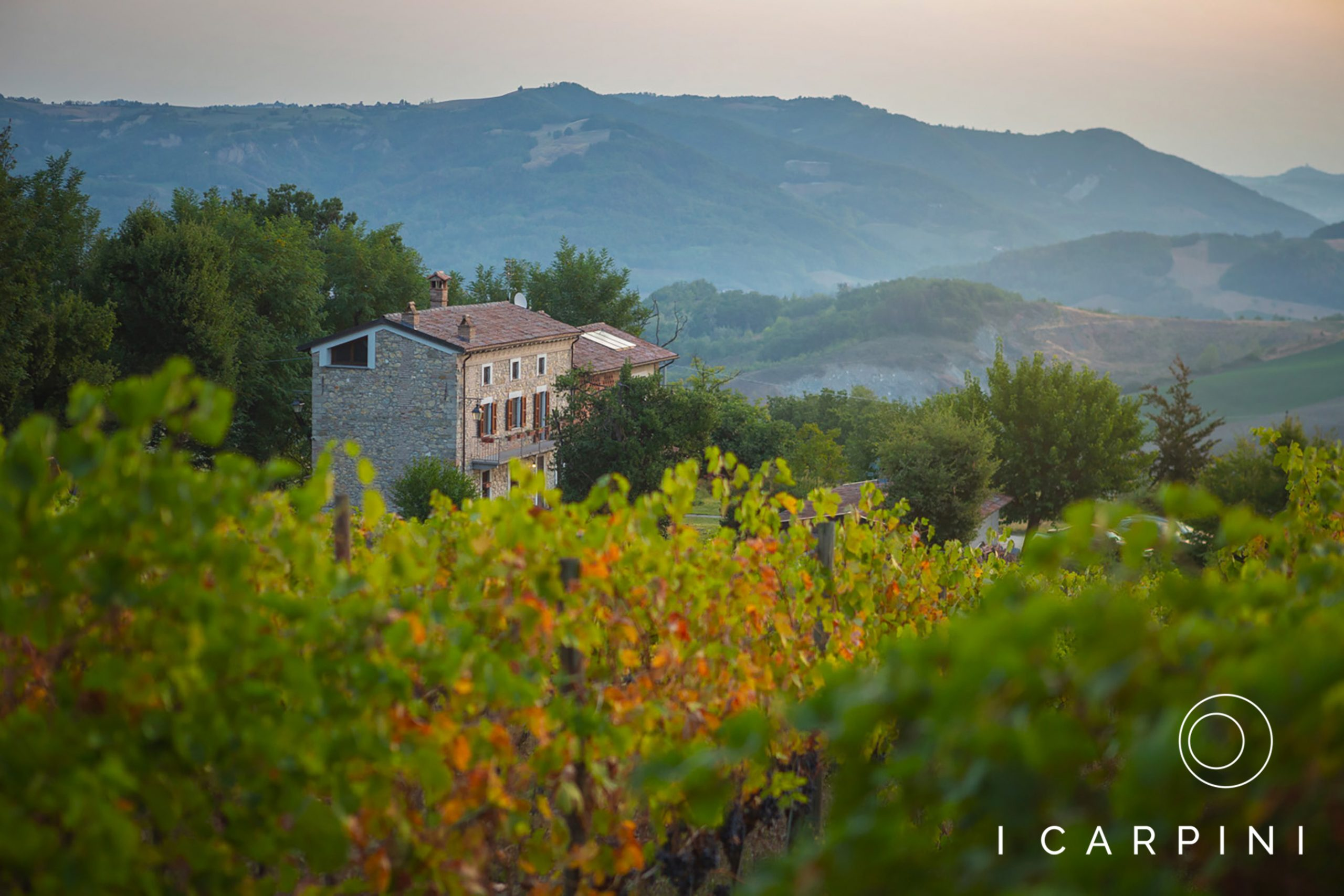 Cascina I Carpini_winery