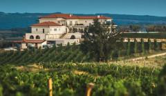 cattunar lush vineyard against amazing white estate in croatia