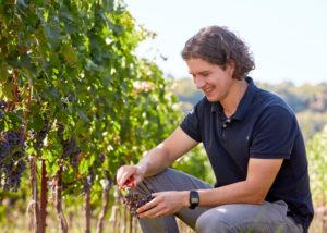 Cave Spring Vineyard_Gabe Etherington-vineyard