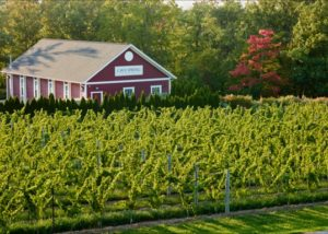 Cave Spring Vineyard_Home-farm-vineyard-red barn