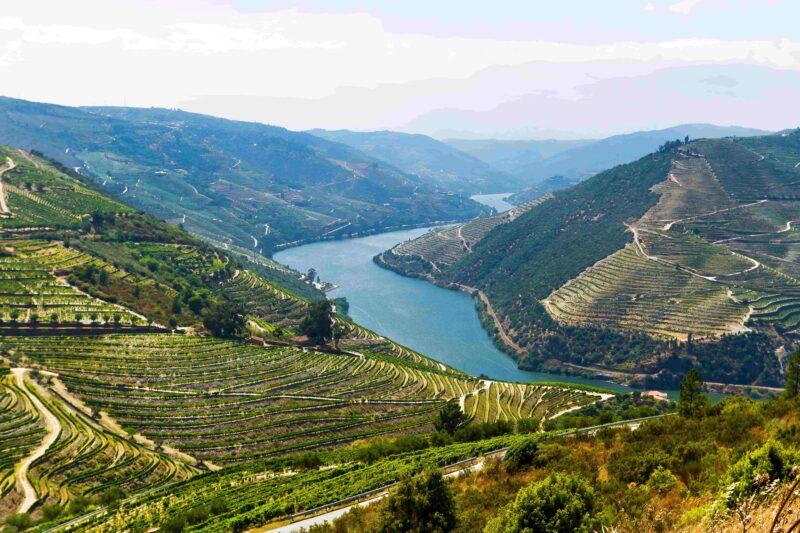 Porto & Douro wine region